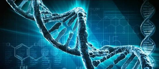 Генетика роста